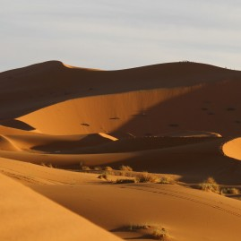 Erg Chebbi dunes, Merzouga, Morroco