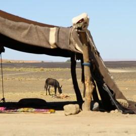 Berber homestead, Maroc
